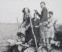 Radical Object: Potato Planter at Frating Hall Farm